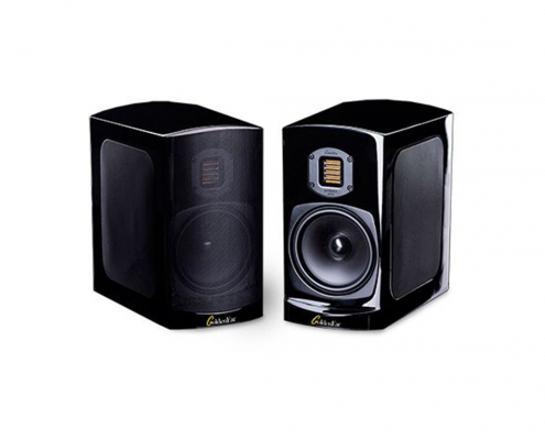 GoldenEar BRX Loudspeakers